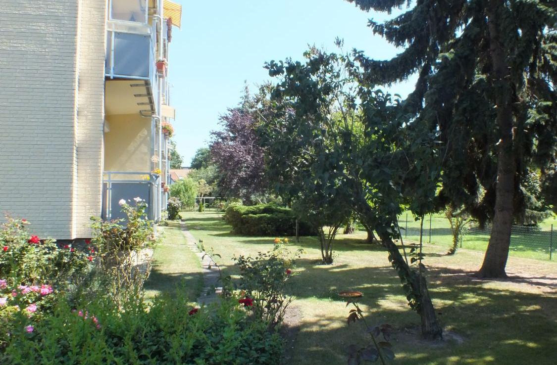Hinterm Haus mit Garten